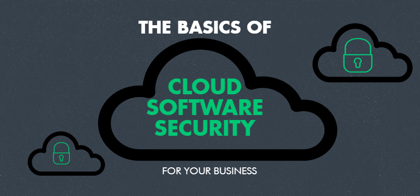 the basics of cloud software security